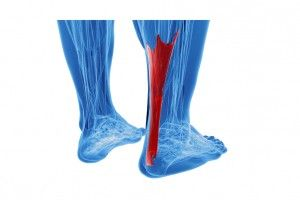 Achilles tendinopathy sports podiatrist Melbourne