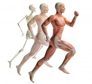 computer gait analysis Melbourne