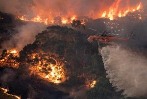 Victorian Bushfire Appeal Melbourne Podiatrists